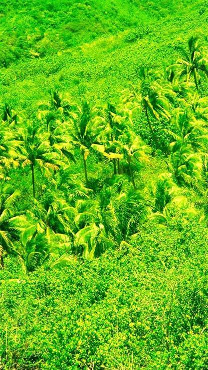 青山绿水大自然风景手机壁纸_风景520
