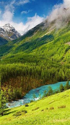 风景,唯美,森林,蓝天,白云,小溪,旅行,绿色