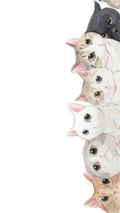 卡通,猫咪,白色
