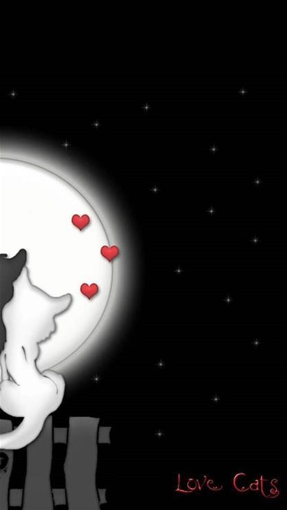 卡通,猫咪,月亮