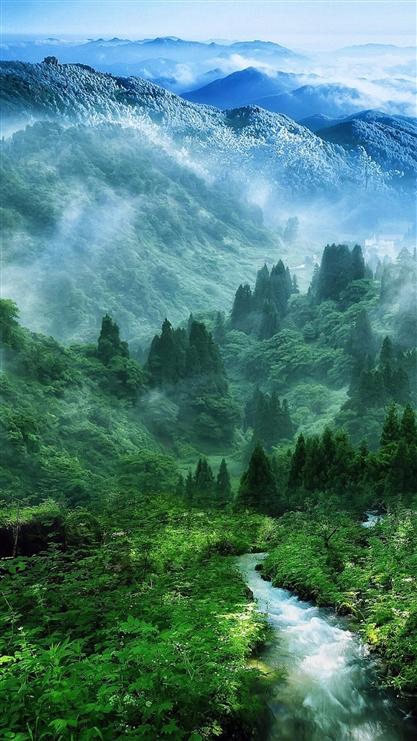 山水,森林,风景,彩色