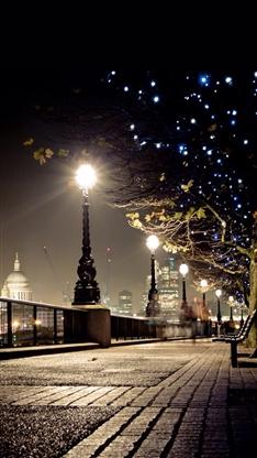 街道,路灯,夜晚